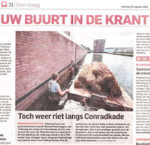 AD Haagse Courant 16-08-2014