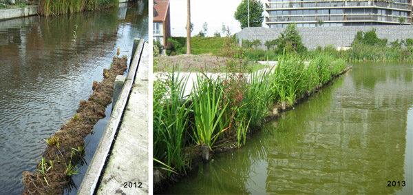 aanleg voorbeplante kokosrollen Amersfoort, 2012 en 2013, HelkantPlant