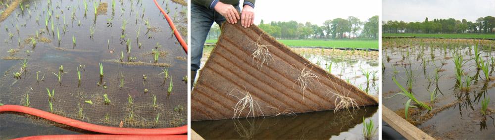 Kwekerij-matten-3x
