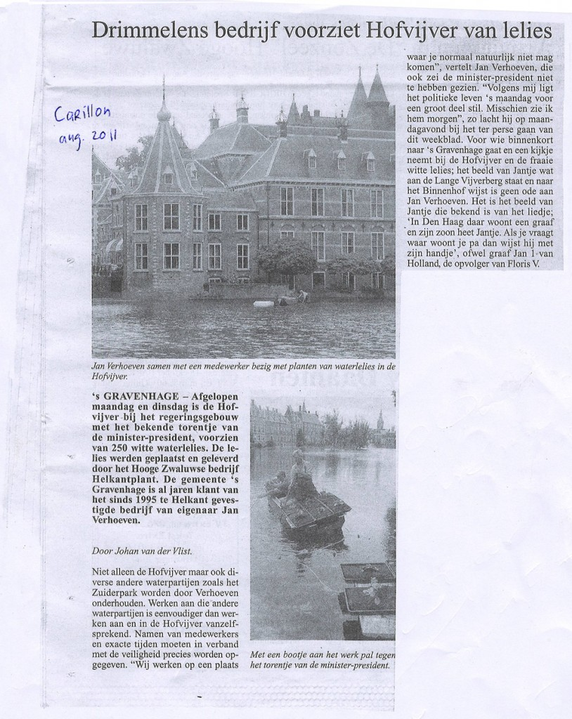 artikel waterlelies Hofvijver, HelkantPlant