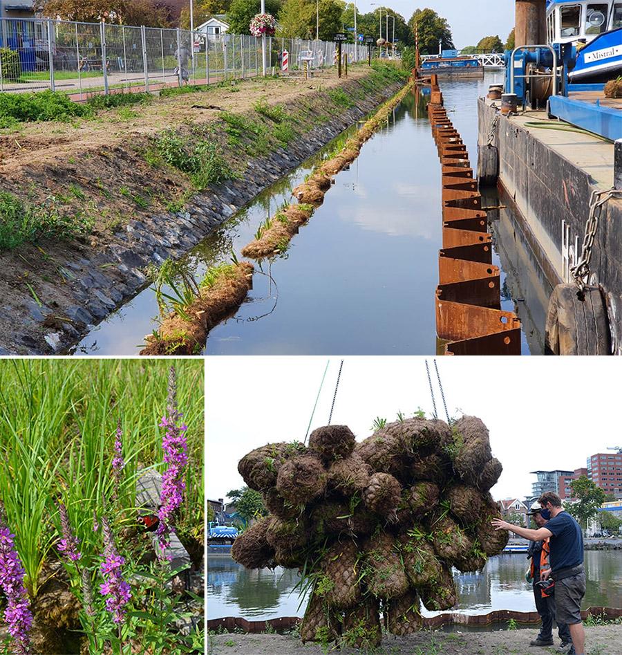 kokosrollen Utrecht Merwedekanaal