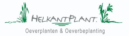HelkantPlant